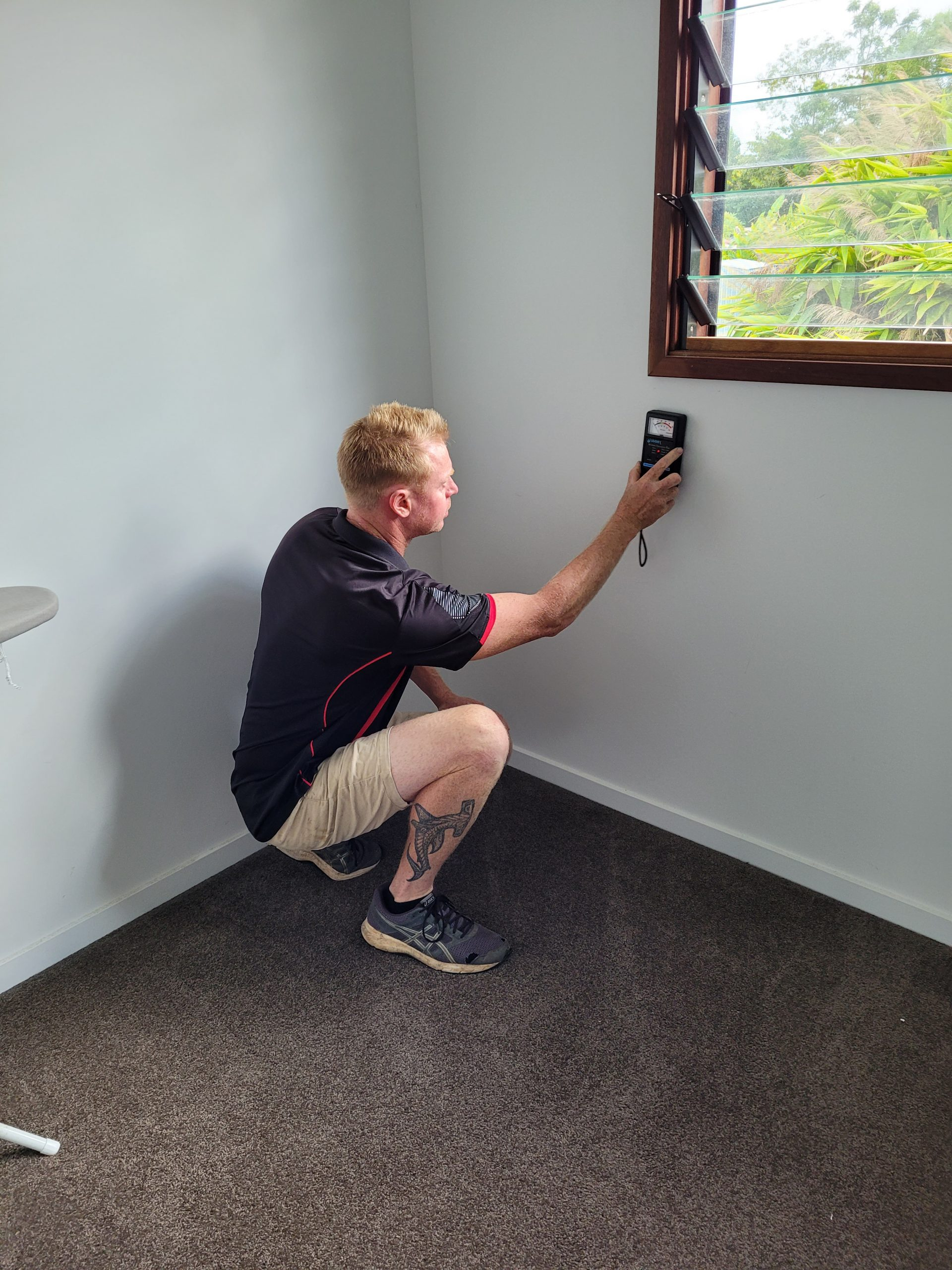 thermal pest inspections far-north-coast