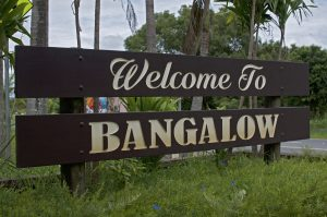 Building and Pest Inspection in Bangalow